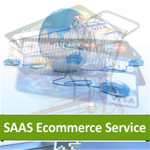 Hosted Ecommerce Service Based On SAAS Platform